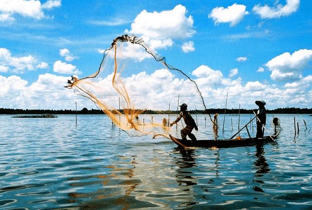 Cảnh chài lưới trên đầm Thị Tường ở Cà Mau.