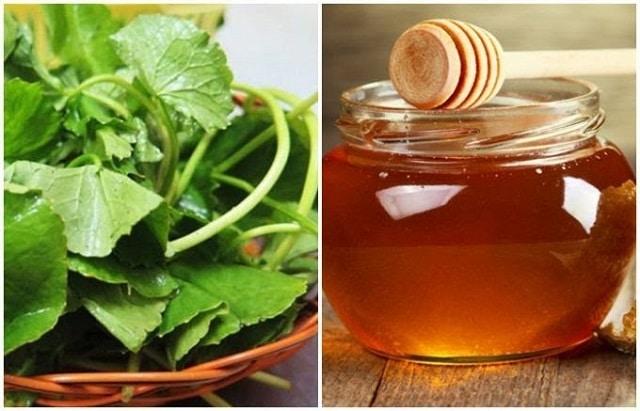 Rau má kết hợp mật ong giúp giảm mụn mờ thâm hiệu quả